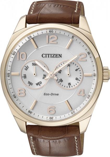 Citizen Uhr AO9024-16A golden plattierte...